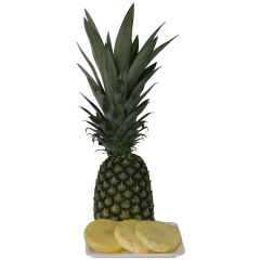 Philippines Pineapple